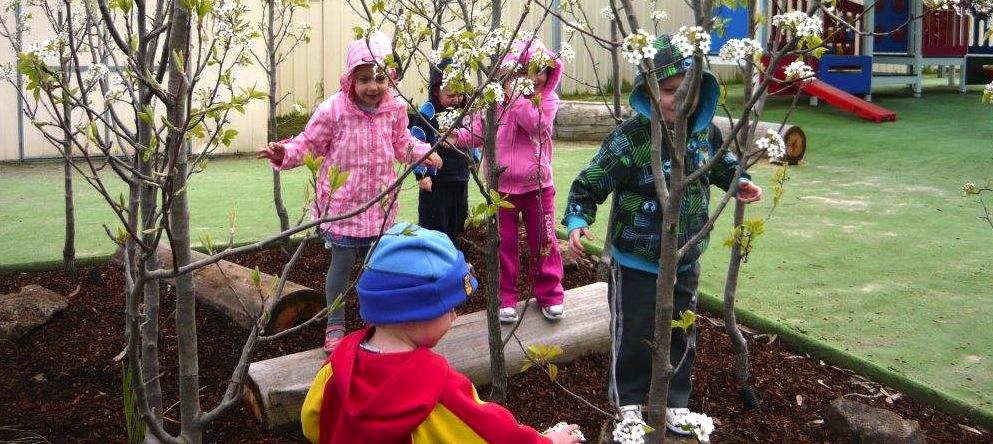 Dudley Street Childcare and Kindergarten